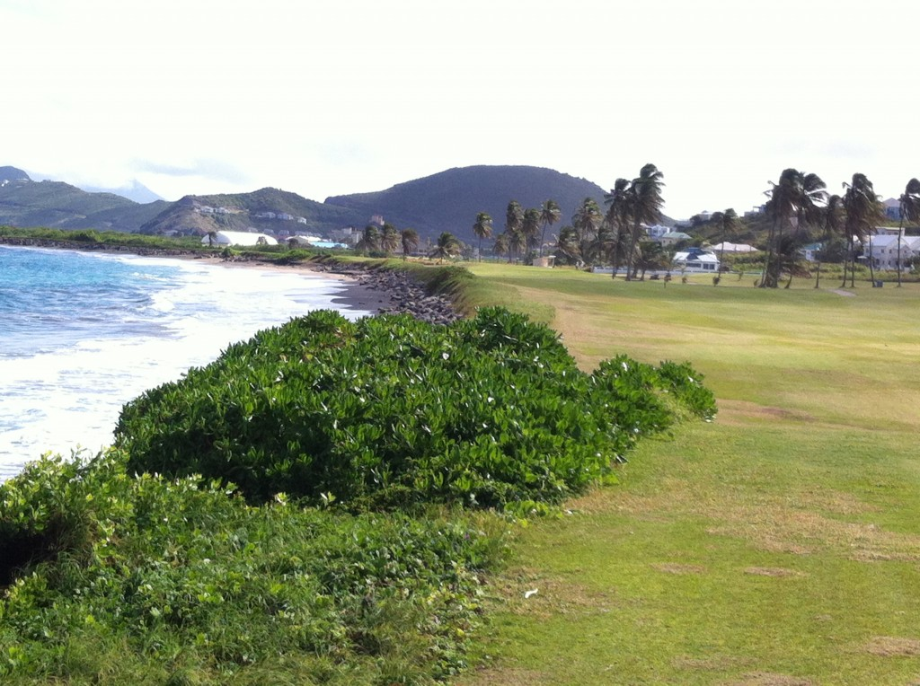 PerryGolf Caribbean Couples Golf Cruise