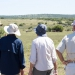 <h2>The Best of South Africa Escorted 2016</h2>13 Nights, 3 on Safari at Shamwari Game Preserve | 5 Rounds | March 2 – 16