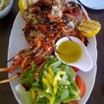 Caribbean Crayfish
