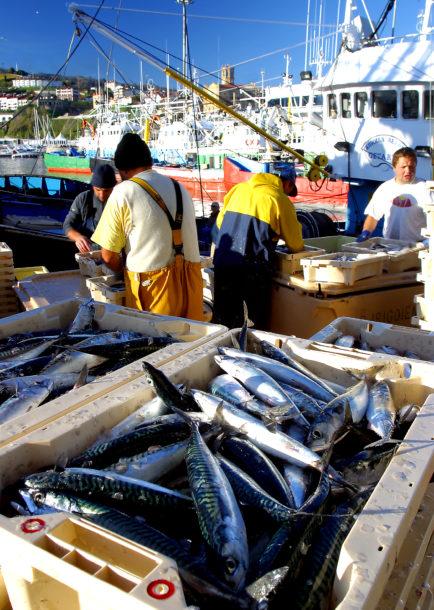 Fishing - Spain - PerryGolf.com
