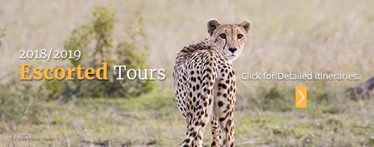 2018/2019 Escorted Golf Vacations with PerryGolf