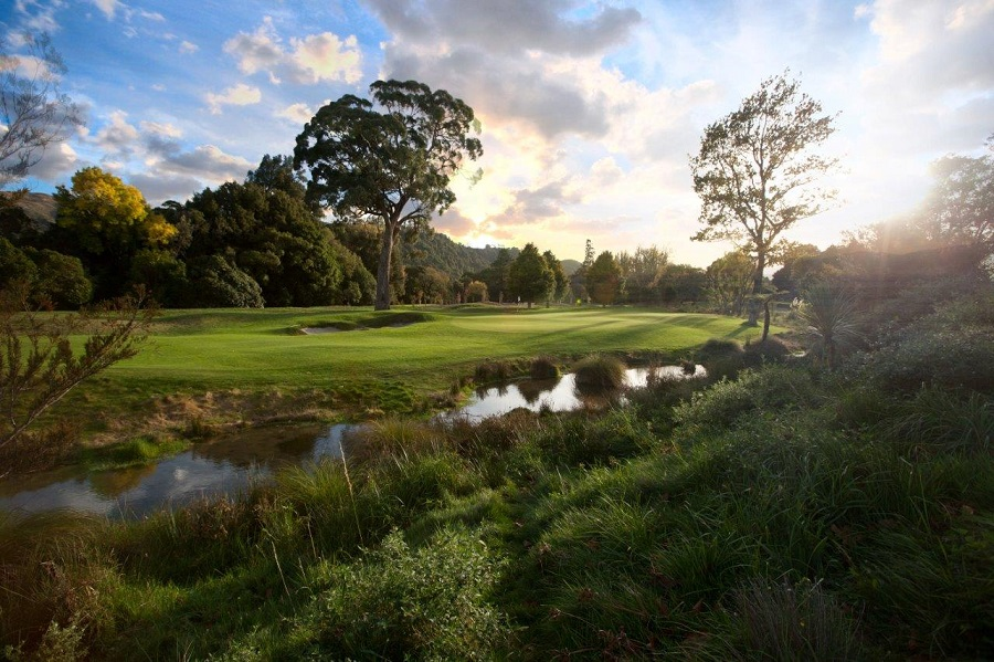 Royal Wellington Golf Club by David Bradley